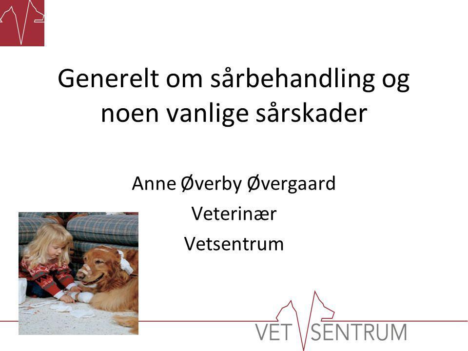 Anne Øverby Øvergaard Veterinær Vetsentrum Generelt om sårbehandling og noen vanlige sårskader
