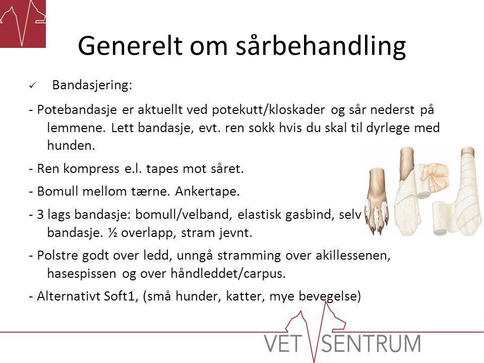 Generelt om sårbehandling  Gode bandasjeregler:  Hold bandasjen tørr, plast + potesokk el.