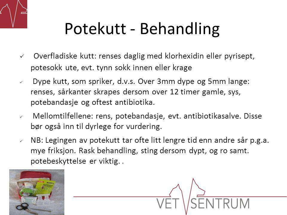Potekutt - Behandling  Overfladiske kutt: renses daglig med klorhexidin eller pyrisept, potesokk ute, evt.