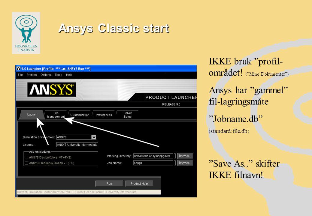Ansys Classic start IKKE bruk profil- området.