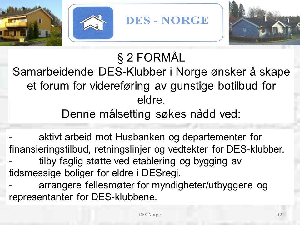 12DES-Norge -aktivt arbeid mot Husbanken og departementer for finansieringstilbud, retningslinjer og vedtekter for DES-klubber. -tilby faglig støtte
