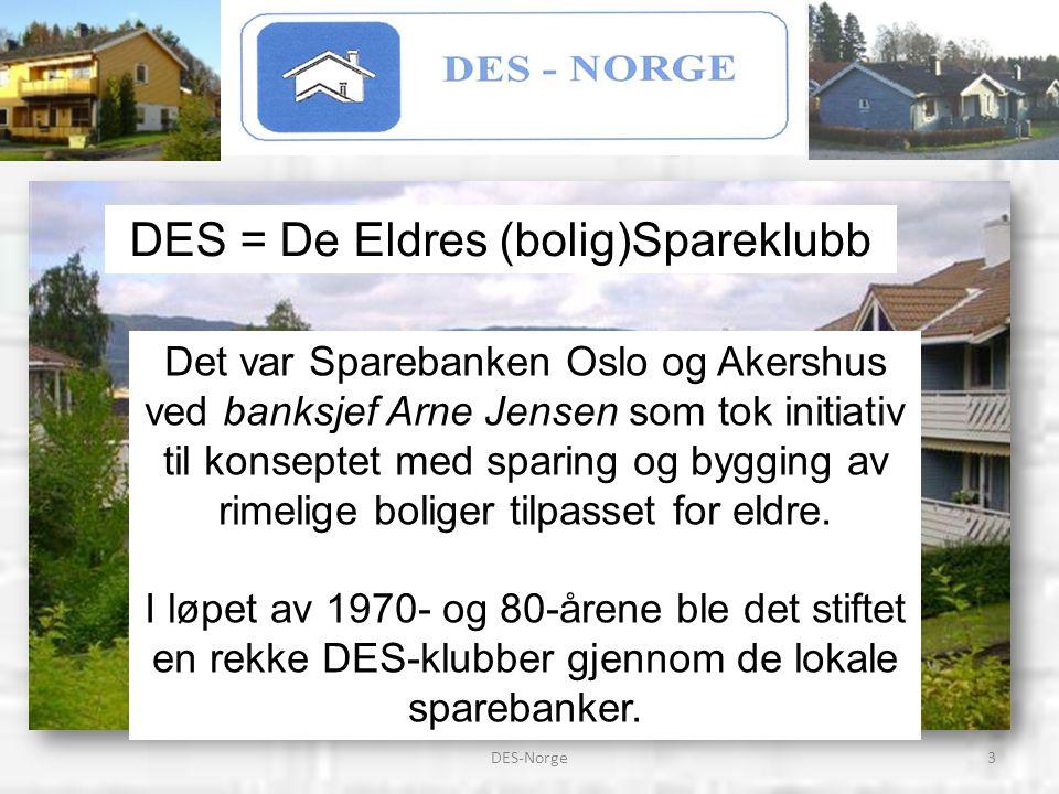 24DES-Norge START AV EN DES-KLUBB Et arbeidsutvalg bestående av representanter fra interessegruppene som vil starte dette DES-prosjektet settes sammen.