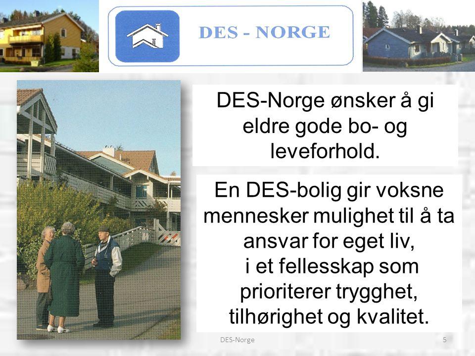 6DES-Norge DES-Norge vil arbeide aktivt for å: * Være et bindeledd mellom kommunaldepartementet og DES-klubbene * Videreføre gunstige botilbud for eldre * Samarbeide med finansieringsinstitusjoner for tilbud om finansiering