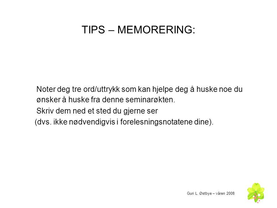 TIPS – MEMORERING: Noter deg tre ord/uttrykk som kan hjelpe deg å huske noe du ønsker å huske fra denne seminarøkten. Skriv dem ned et sted du gjerne