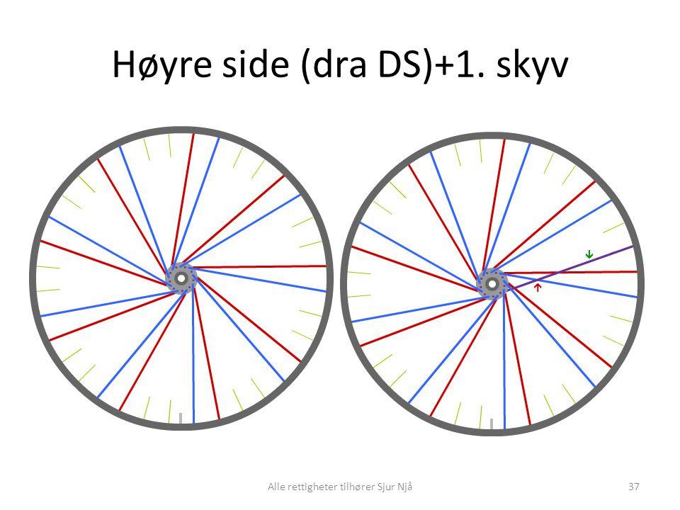 Høyre side (dra DS)+1. skyv 37Alle rettigheter tilhører Sjur Njå