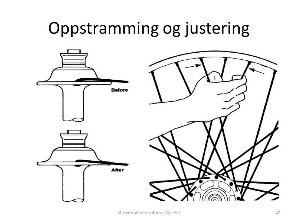 Oppstramming og justering Alle rettigheter tilhører Sjur Njå40