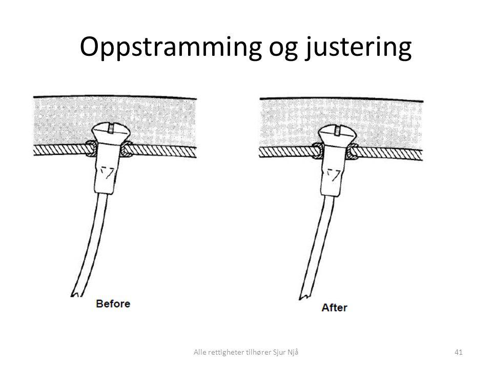 Oppstramming og justering Alle rettigheter tilhører Sjur Njå41
