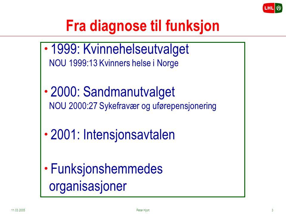 11.03.2005Peter Hjort2 Fra diagnose til funksjon – fra problem til mulighet