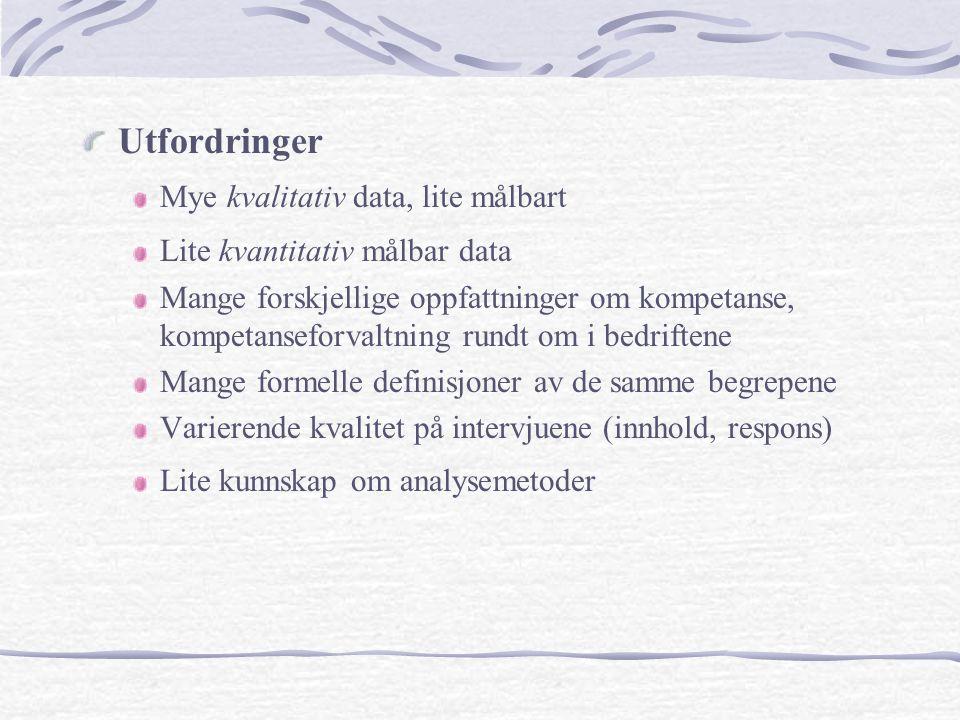 Analyseperioden Grunnlag for analysen Kompendium av innsamlet data Oversiktskart av intervjuene SWOT-analyse av hver enkelt bedrift Intervjusituasjon