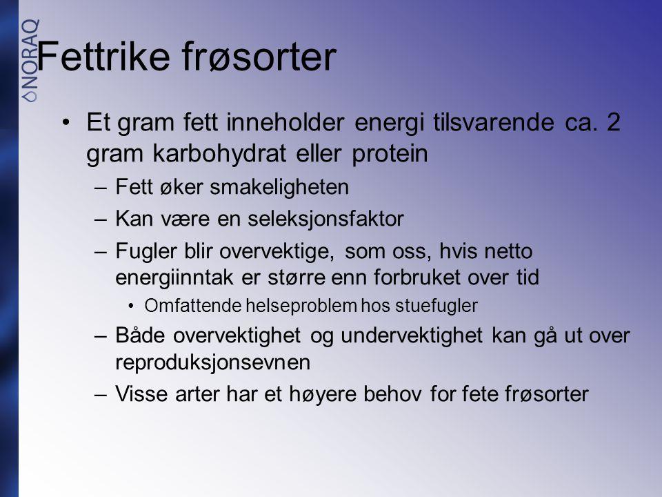 Fettrike frøsorter •Et gram fett inneholder energi tilsvarende ca. 2 gram karbohydrat eller protein –Fett øker smakeligheten –Kan være en seleksjonsfa