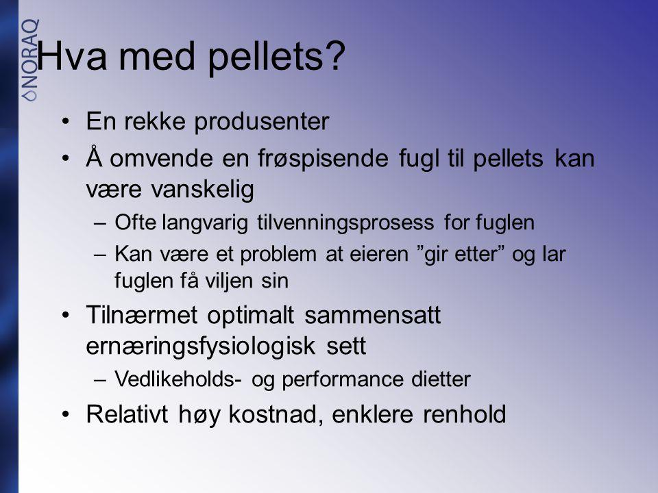 Hva med pellets? •En rekke produsenter •Å omvende en frøspisende fugl til pellets kan være vanskelig –Ofte langvarig tilvenningsprosess for fuglen –Ka