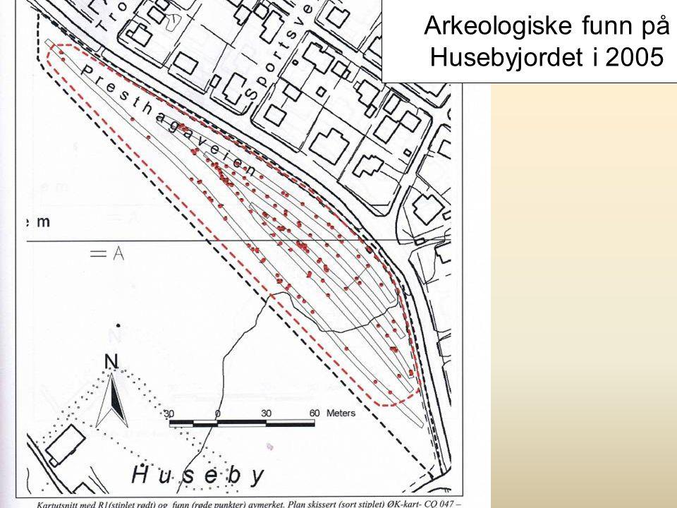 Kulturvern Skedsmokorset og Husebyjordet er Skedsmos historiske sentrum Navnet Skeidismo forteller at det blant mange andre ting også lå en kappridnin