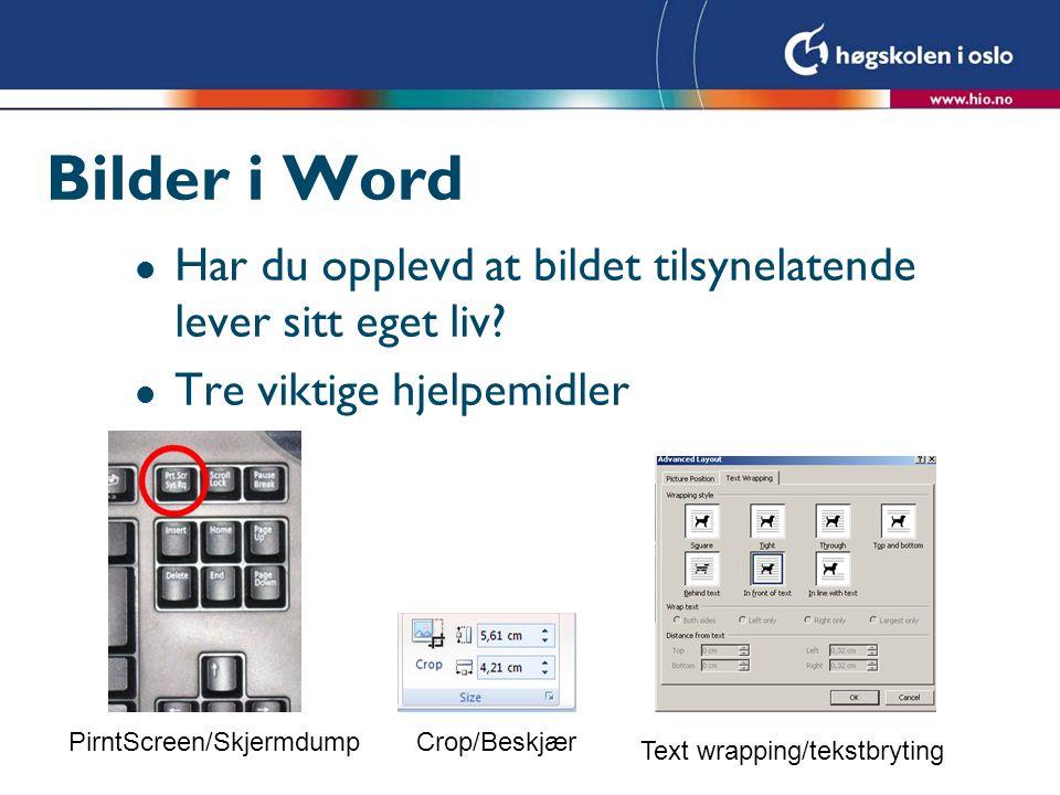Bilder i Word l Har du opplevd at bildet tilsynelatende lever sitt eget liv? l Tre viktige hjelpemidler Text wrapping/tekstbryting Crop/BeskjærPirntSc