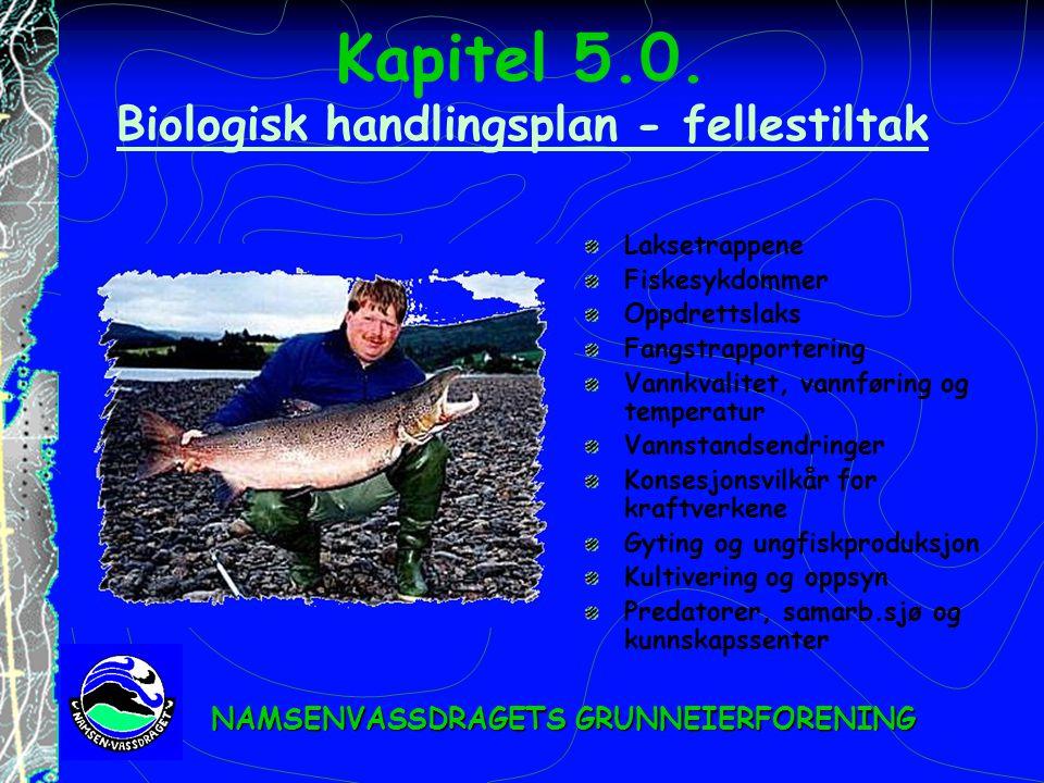 Kapitel 5.0. Biologisk handlingsplan - fellestiltak Biologisk handlingsplan - fellestiltak Laksetrappene Fiskesykdommer Oppdrettslaks Fangstrapporteri