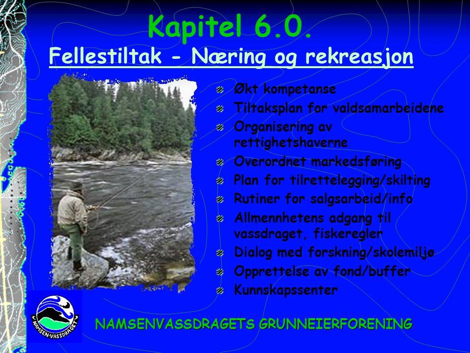 Kapitel 6.0. Fellestiltak - Næring og rekreasjon Fellestiltak - Næring og rekreasjon Økt kompetanse Tiltaksplan for valdsamarbeidene Organisering av r