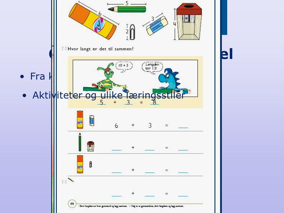 Oppbygging av kapittel •Fra konkret til abstrakt •Aktiviteter og ulike læringsstiler