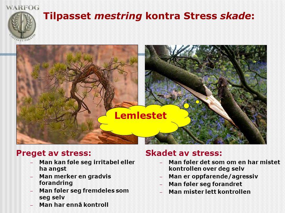Tilpasset mestring kontra Stress skade: Skadet av stress: – Man føler det som om en har mistet kontrollen over deg selv – Man er oppfarende/agressiv –