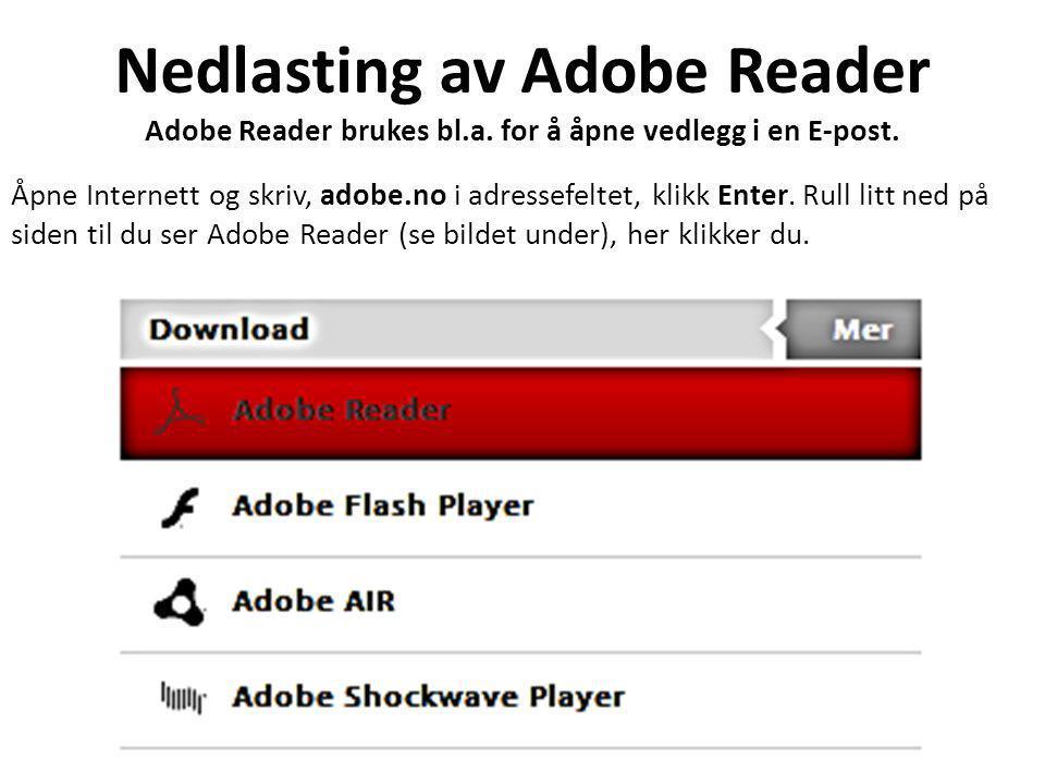 Nedlasting av Adobe Reader Adobe Reader brukes bl.a.