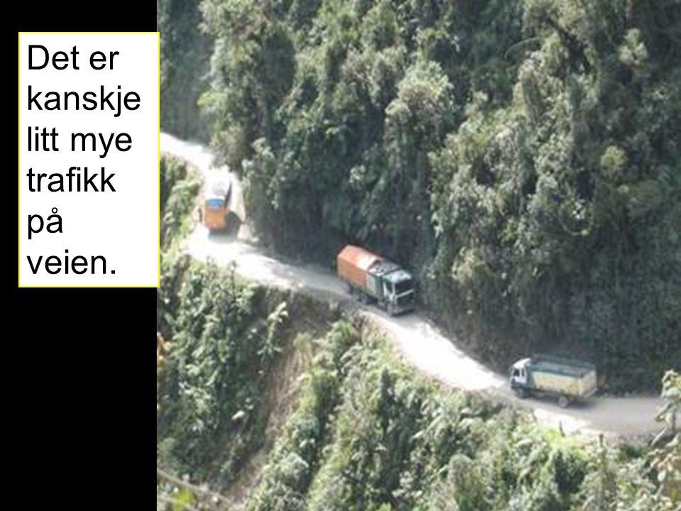Det er kanskje litt mye trafikk på veien.