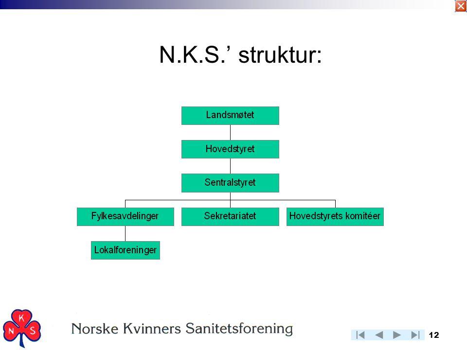 12 N.K.S.' struktur: