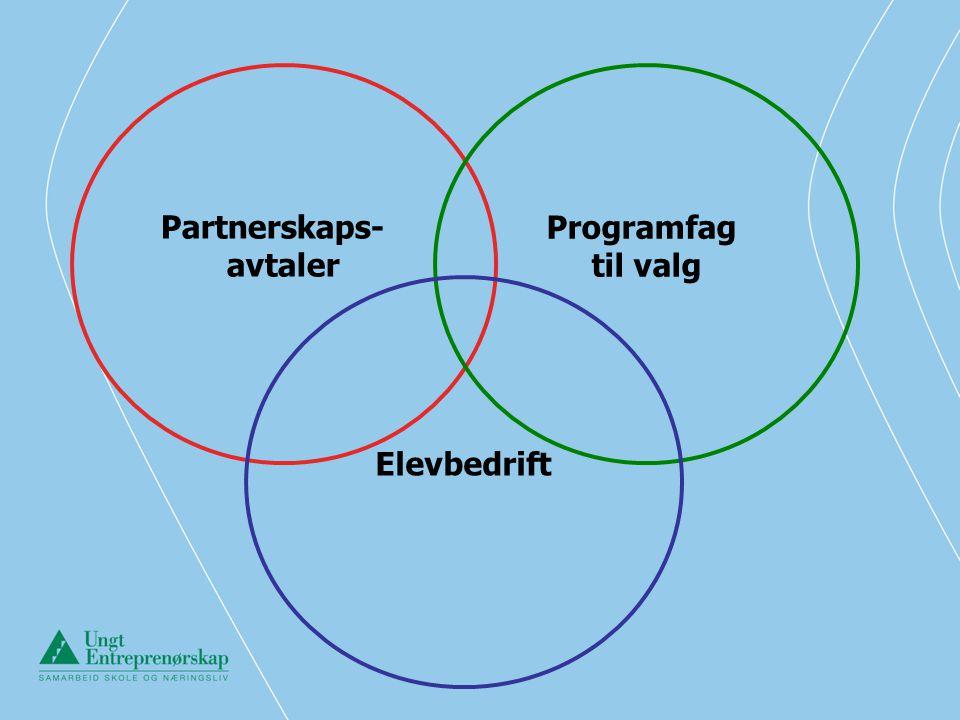Partnerskaps- avtaler Programfag til valg Elevbedrift