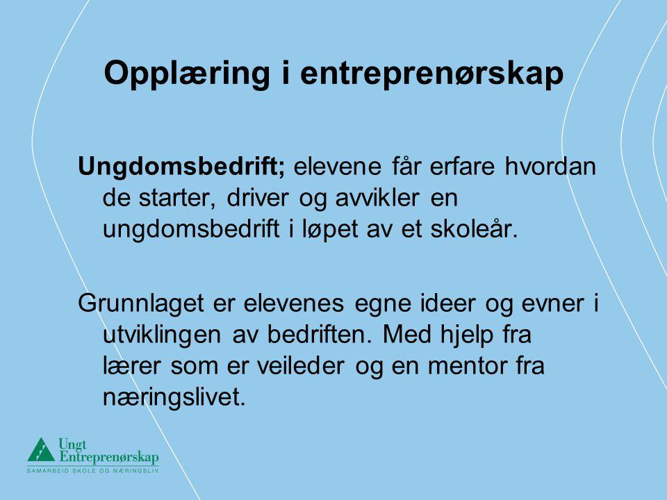 Opplæring i entreprenørskap Ungdomsbedrift; elevene får erfare hvordan de starter, driver og avvikler en ungdomsbedrift i løpet av et skoleår. Grunnla