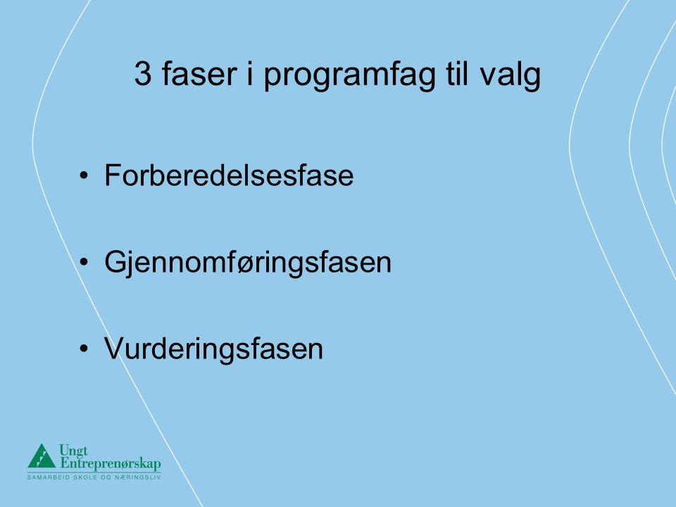 3 faser i programfag til valg •Forberedelsesfase •Gjennomføringsfasen •Vurderingsfasen