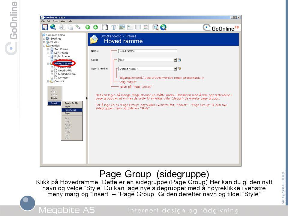 """Page Group (sidegruppe) Klikk på Hovedramme. Dette er en sidegruppe (Page Group) Her kan du gi den nytt navn og velge """"Style"""" Du kan lage nye sidegrup"""