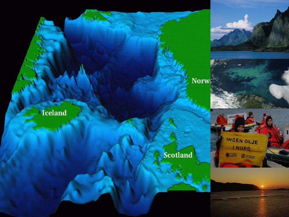 Området anses i miljø- og ressurssammenheng som et av de aller viktigste områdene langs norskekysten.
