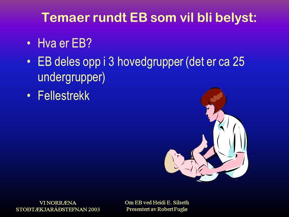 VI NORRÆNA STOÐTÆKJARÁÐSTEFNAN 2003 Om EB ved Heidi E. Silseth Presentert av Robert Fuglø Temaer rundt EB som vil bli belyst: •Hva er EB? •EB deles op