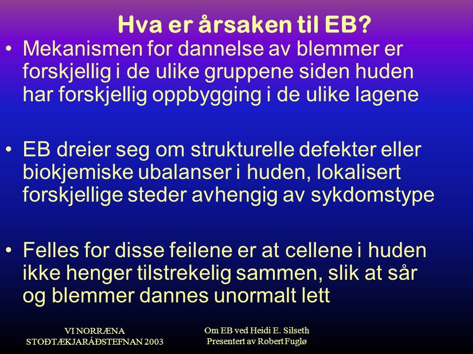 VI NORRÆNA STOÐTÆKJARÁÐSTEFNAN 2003 Om EB ved Heidi E. Silseth Presentert av Robert Fuglø Hva er årsaken til EB? •Mekanismen for dannelse av blemmer e