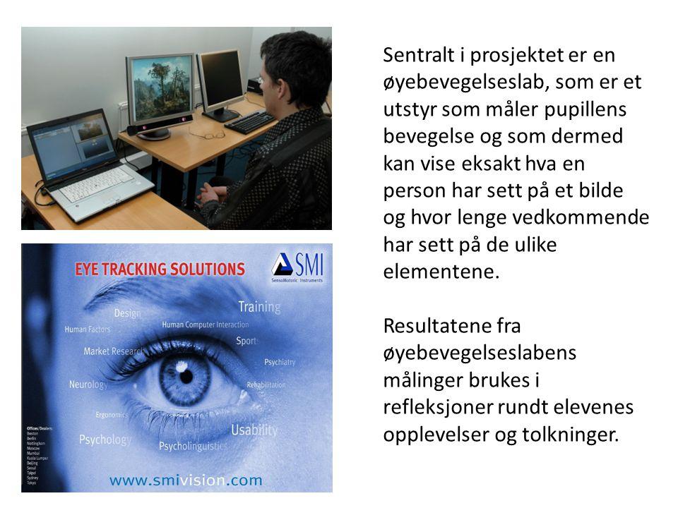 Sentralt i prosjektet er en øyebevegelseslab, som er et utstyr som måler pupillens bevegelse og som dermed kan vise eksakt hva en person har sett på et bilde og hvor lenge vedkommende har sett på de ulike elementene.