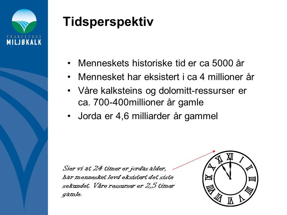 Tidsperspektiv •Menneskets historiske tid er ca 5000 år •Mennesket har eksistert i ca 4 millioner år •Våre kalksteins og dolomitt-ressurser er ca. 700