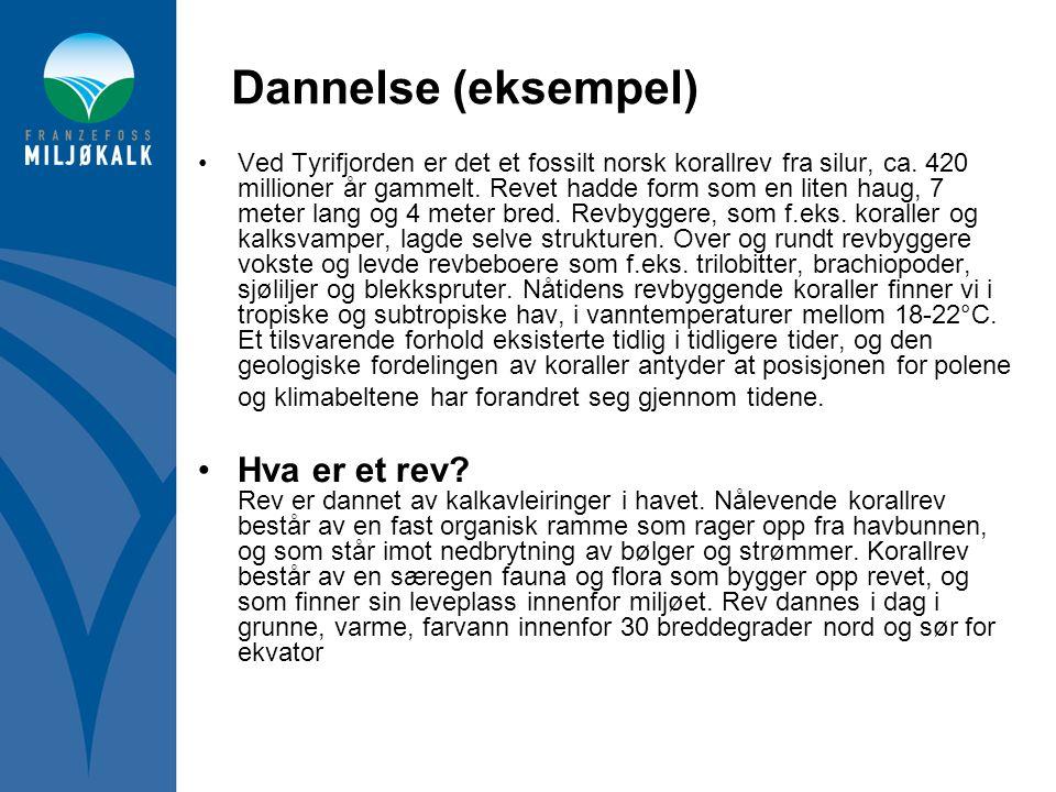 Dannelse (eksempel) •Ved Tyrifjorden er det et fossilt norsk korallrev fra silur, ca. 420 millioner år gammelt. Revet hadde form som en liten haug, 7