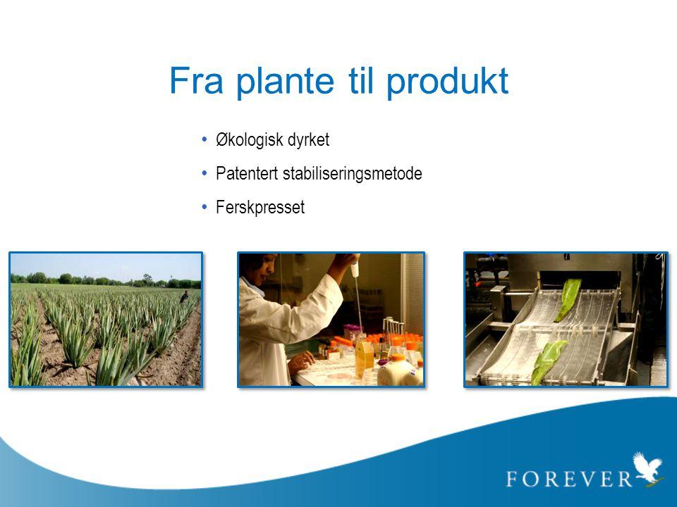 Fra plante til produkt • Økologisk dyrket • Patentert stabiliseringsmetode • Ferskpresset