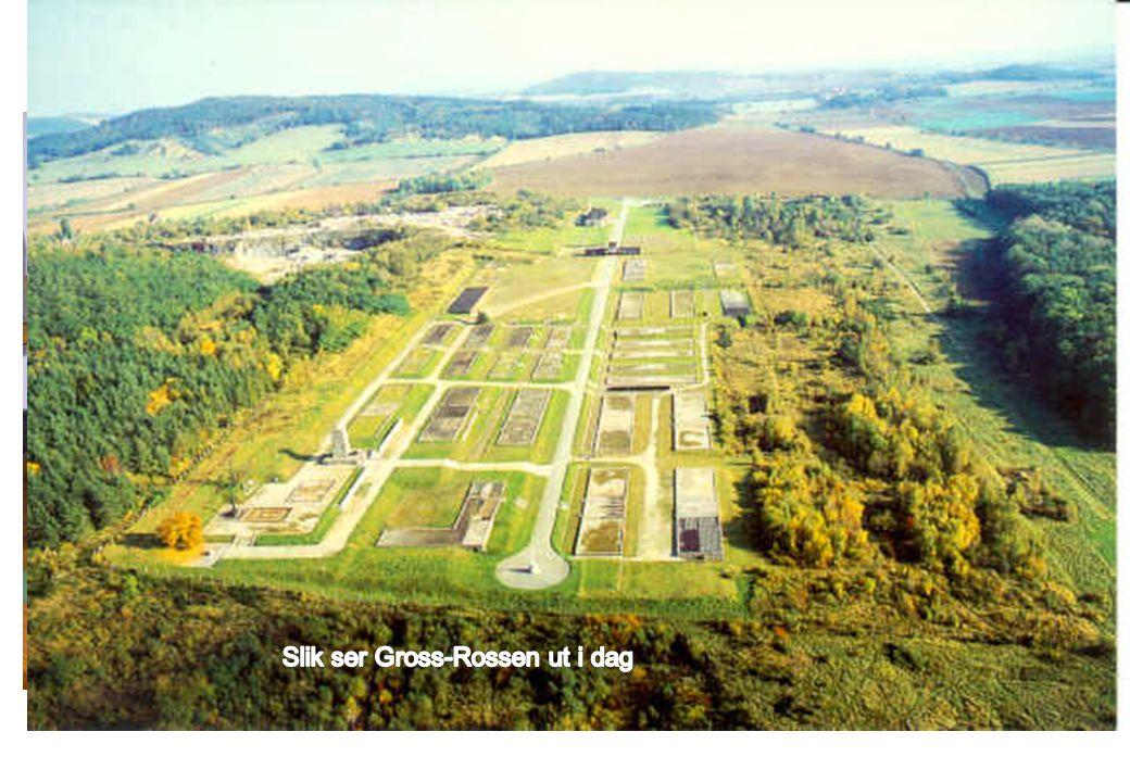 Etter 1945 Gross-Rosen Gross-Rossen leiren ligger i Polen på grensen mot Tyskland. Den var først en underleir til Sachsenhausen og ble siden hovedleir