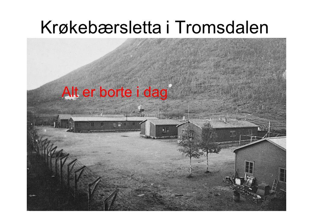 Krøkebærsletta i Tromsdalen Alt er borte i dag