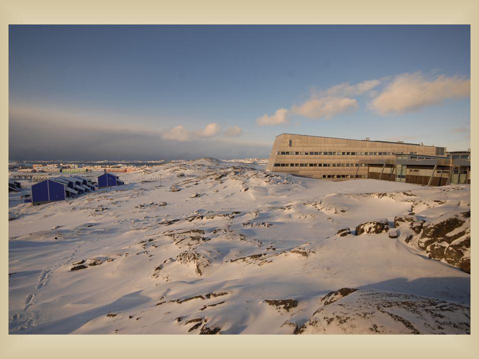 Naturinstituttet, ved Nikoline Ziemer, leder av Akademikernes Sammenslutning i Grønland, ASG, omvisning på instituttet.