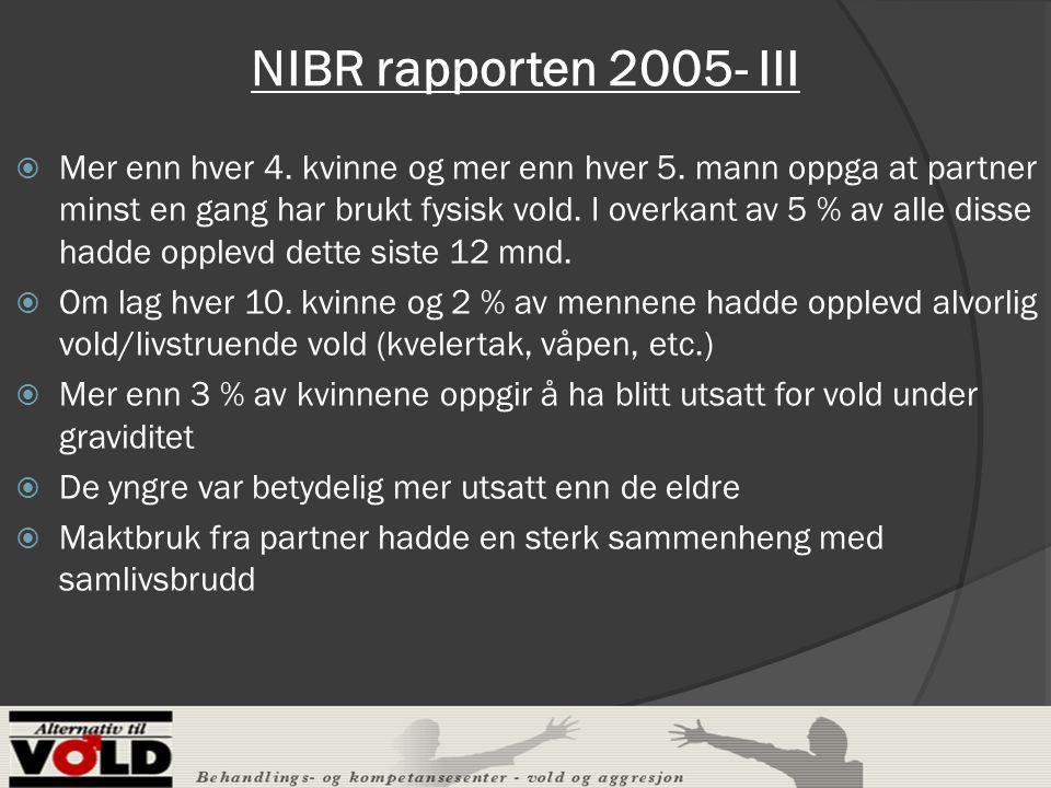 NIBR rapporten 2005- III  Mer enn hver 4.kvinne og mer enn hver 5.