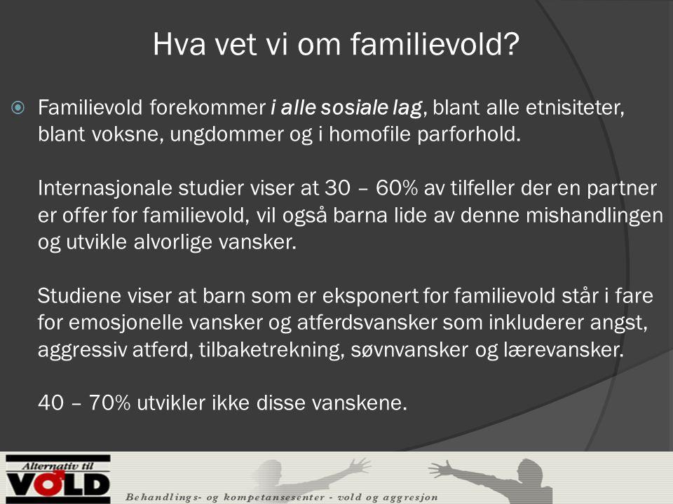 Hva vet vi om familievold.
