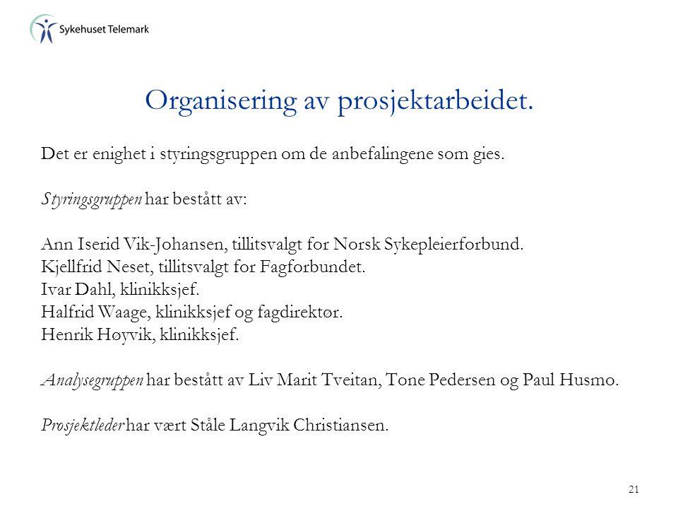 21 Organisering av prosjektarbeidet. Det er enighet i styringsgruppen om de anbefalingene som gies. Styringsgruppen har bestått av: Ann Iserid Vik-Joh