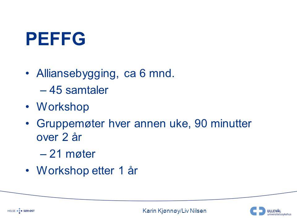 Karin Kjønnøy/Liv Nilsen PEFFG •Alliansebygging, ca 6 mnd. –45 samtaler •Workshop •Gruppemøter hver annen uke, 90 minutter over 2 år –21 møter •Worksh