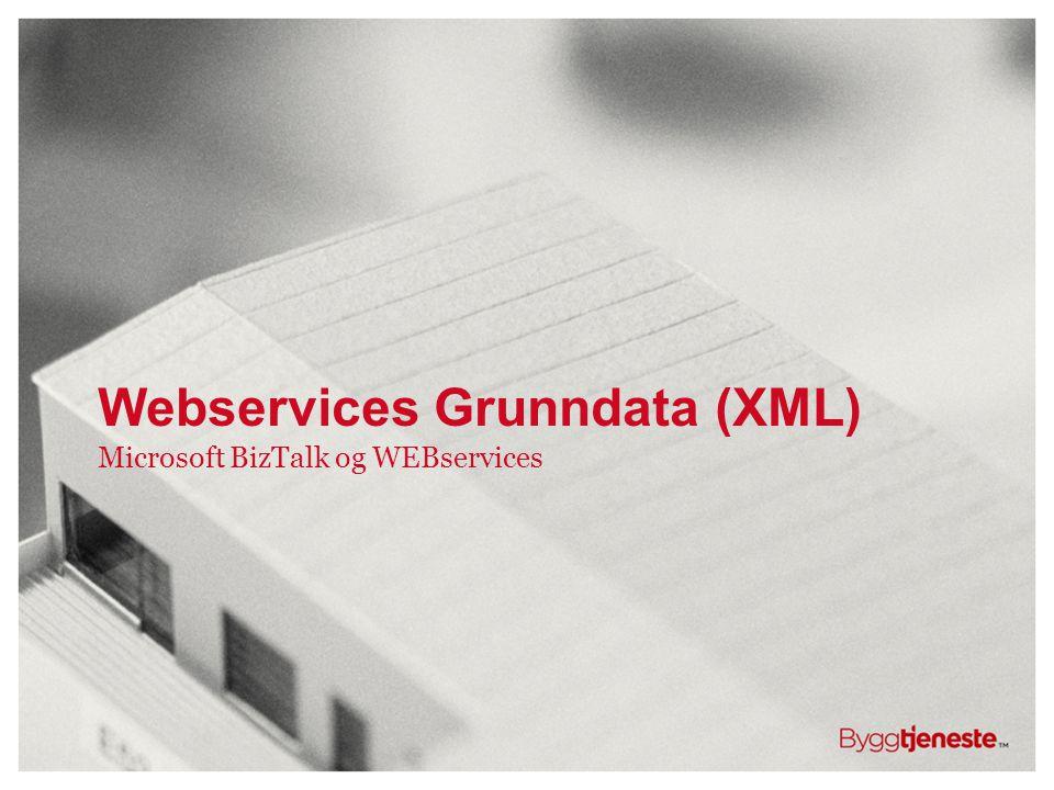 Webservices Grunndata (XML) Microsoft BizTalk og WEBservices