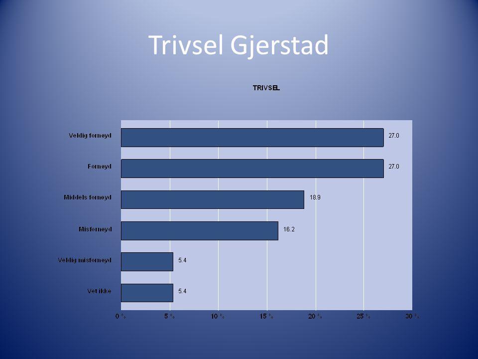 Trivsel Gjerstad
