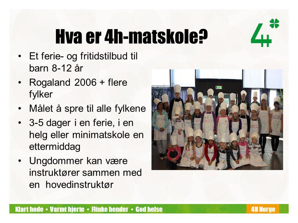 Klart hode • Varmt hjerte • Flinke hender • God helse4H Norge Hva er 4h-matskole? •Et ferie- og fritidstilbud til barn 8-12 år •Rogaland 2006 + flere
