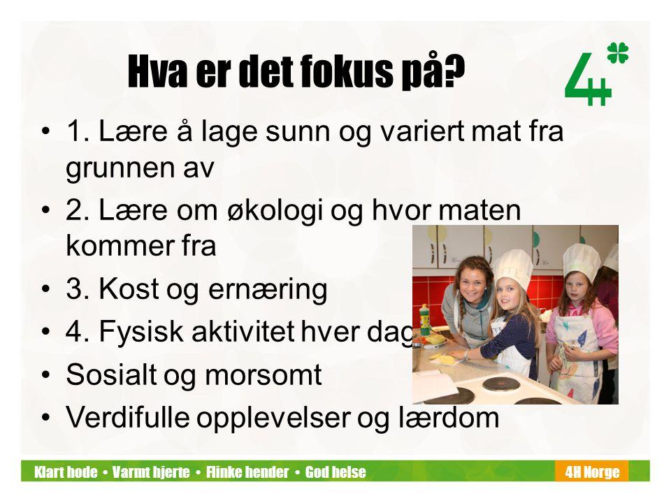 Klart hode • Varmt hjerte • Flinke hender • God helse4H Norge Hva er det fokus på? •1. Lære å lage sunn og variert mat fra grunnen av •2. Lære om økol