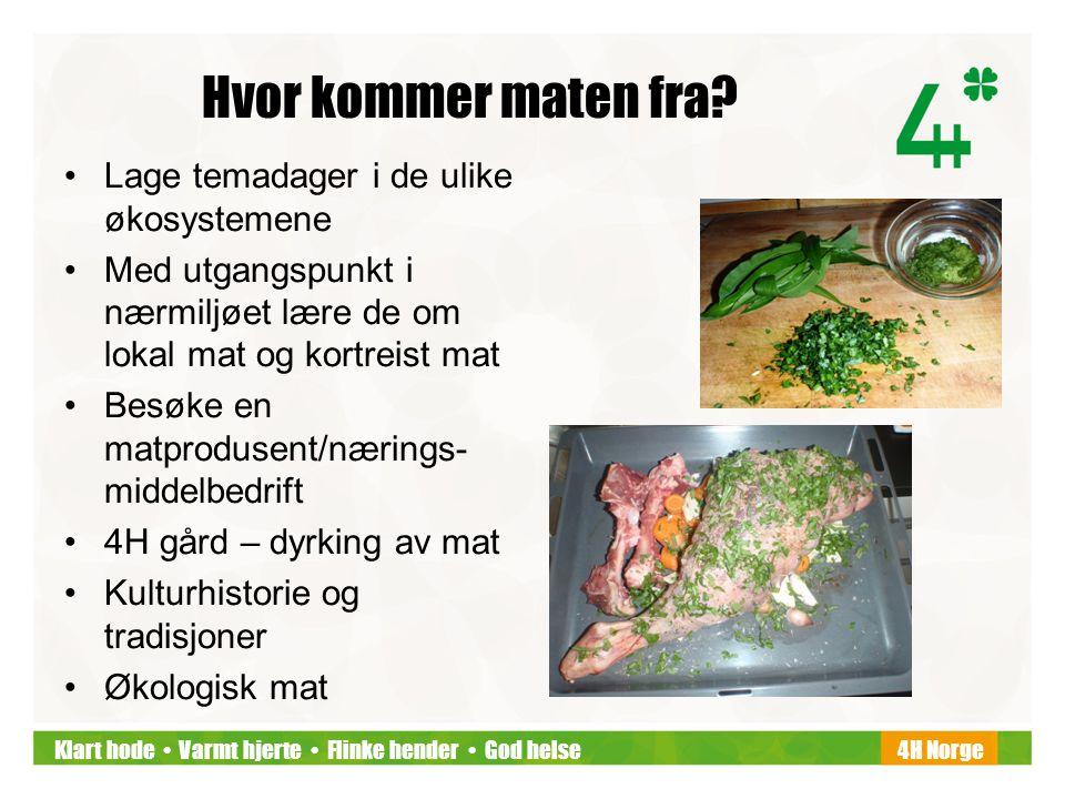 Klart hode • Varmt hjerte • Flinke hender • God helse4H Norge Hvor kommer maten fra? •Lage temadager i de ulike økosystemene •Med utgangspunkt i nærmi