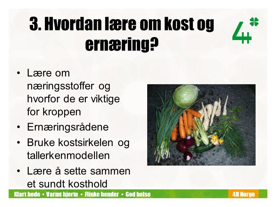 Klart hode • Varmt hjerte • Flinke hender • God helse4H Norge 3. Hvordan lære om kost og ernæring? •Lære om næringsstoffer og hvorfor de er viktige fo