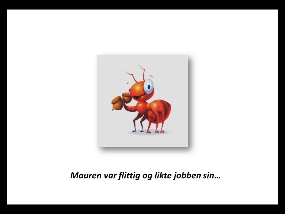 Mauren var flittig og likte jobben sin…