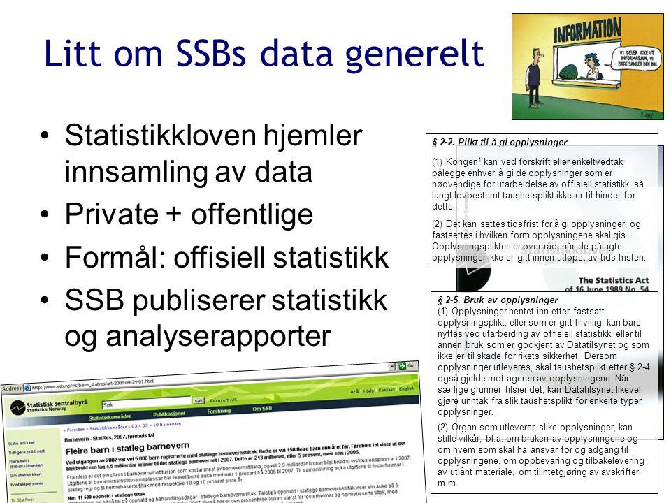 Effektiv produksjon av tjenlig statistikk (stl § 1-1)